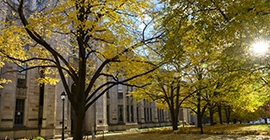 fall foliage outside cathedral of learning